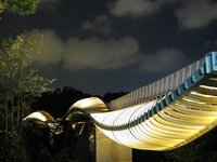 Henderson Wave Bridge